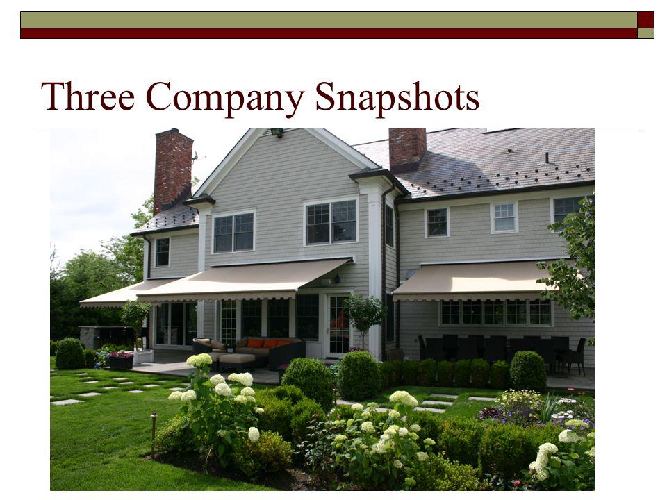Three Company Snapshots