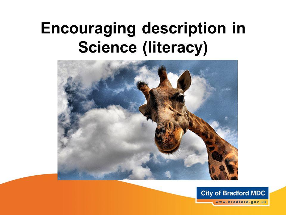 Encouraging description in Science (literacy)