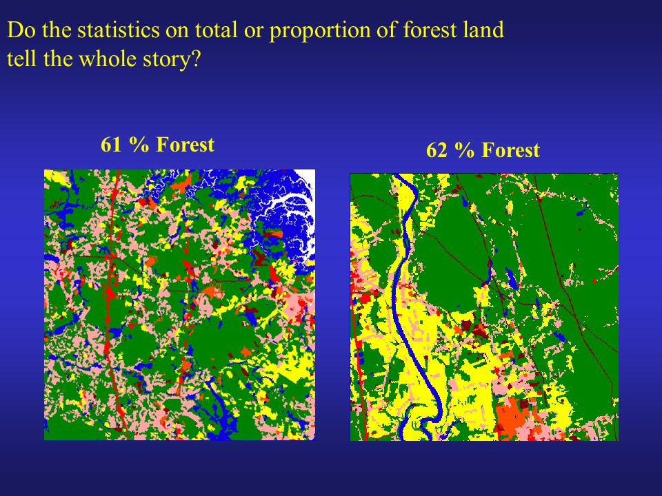 61 % Forest 62 % Forest Do the statistics on total or proportion of forest land tell the whole story