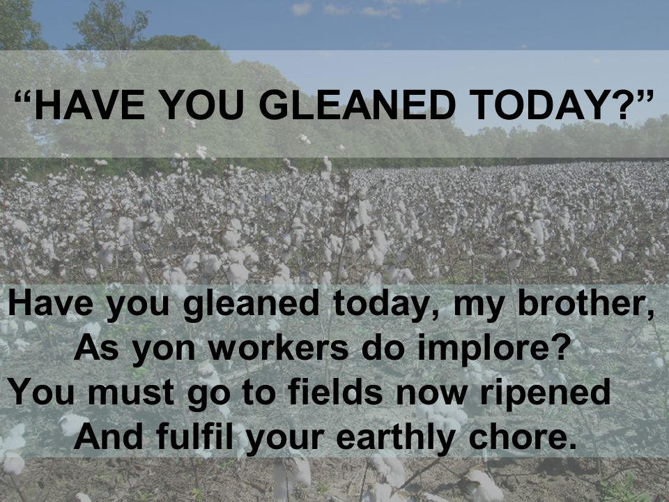 HAVE YOU GLEANED TODAY Have you gleaned today, my brother, As yon workers do implore.