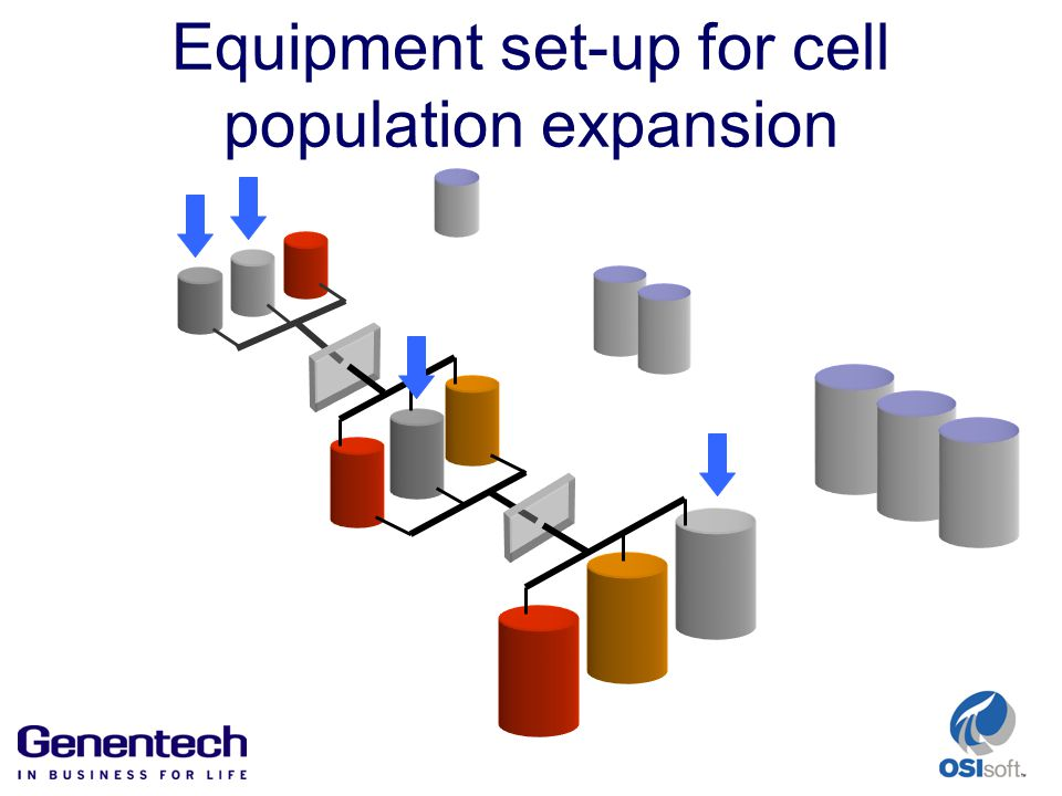 Equipment set-up for cell population expansion