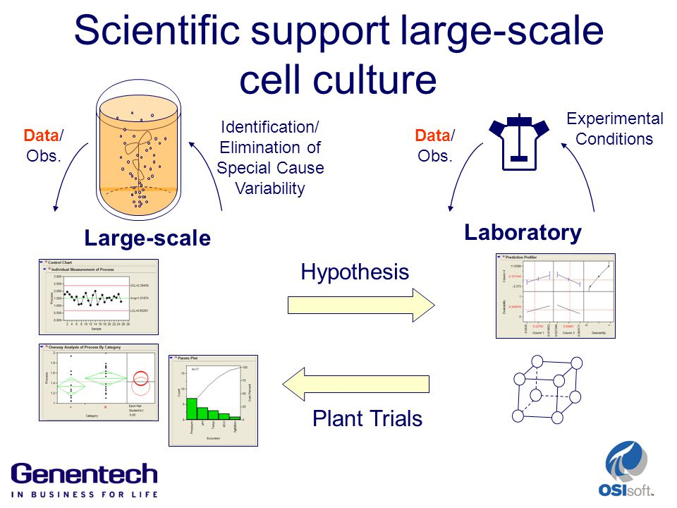 Scientific support large-scale cell culture Large-scale Data/ Obs.