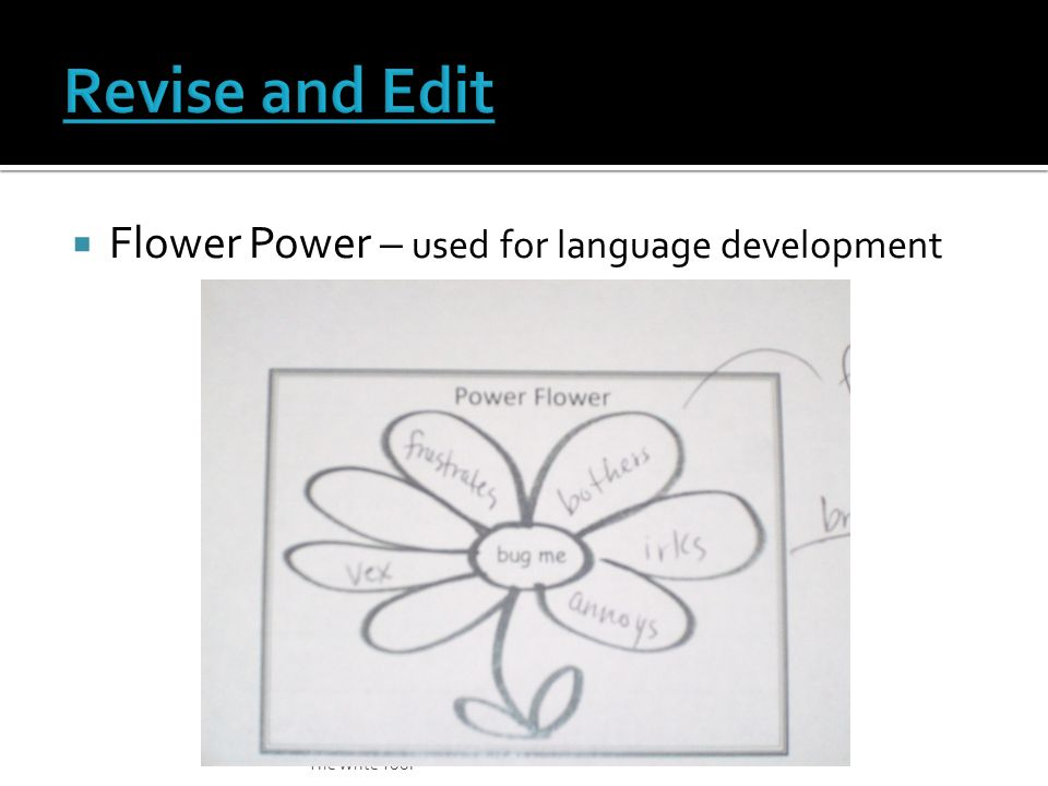  Flower Power – used for language development The Write Tool