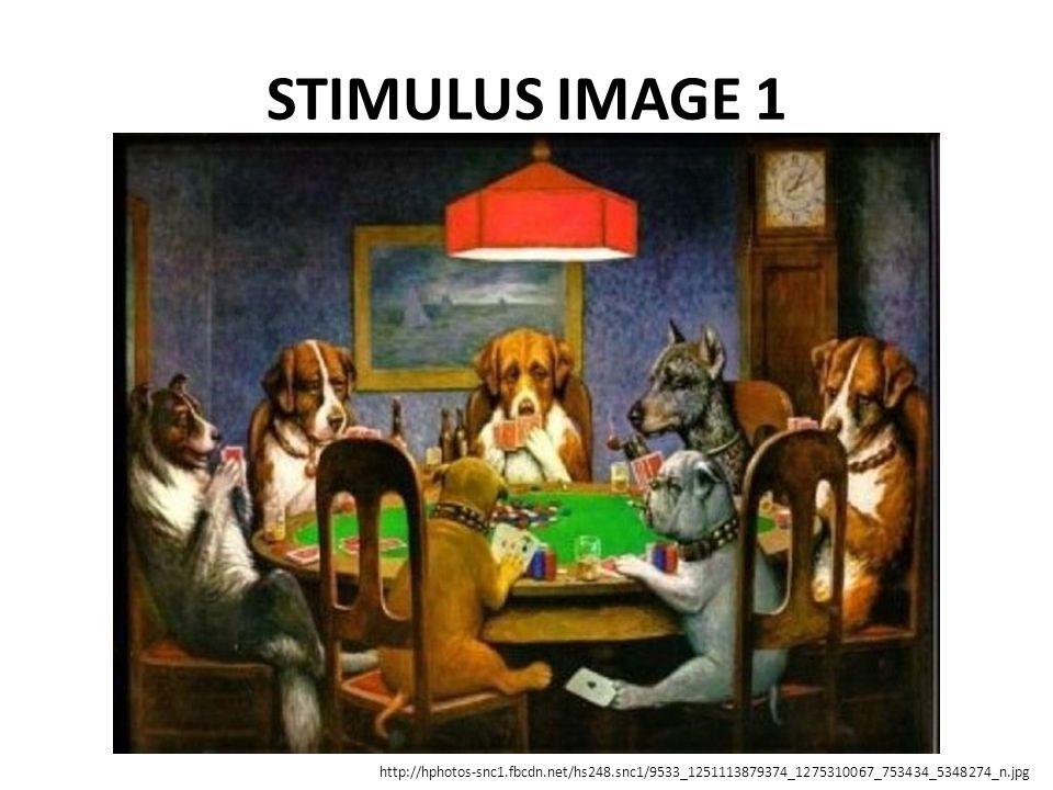 STIMULUS IMAGE 1 http://hphotos-snc1.fbcdn.net/hs248.snc1/9533_1251113879374_1275310067_753434_5348274_n.jpg