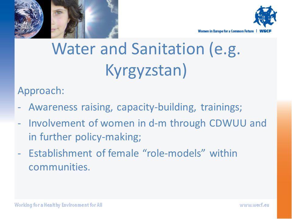 Water and Sanitation (e.g.
