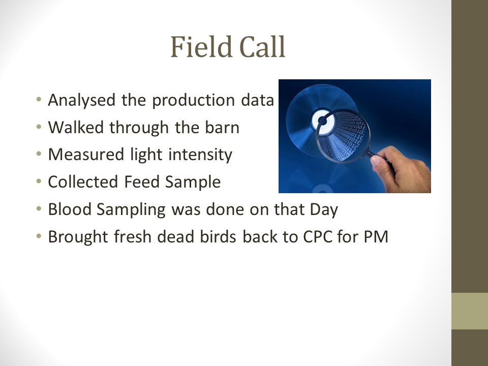 Field Call Analysed the production data Walked through the barn Measured light intensity Collected Feed Sample Blood Sampling was done on that Day Brought fresh dead birds back to CPC for PM