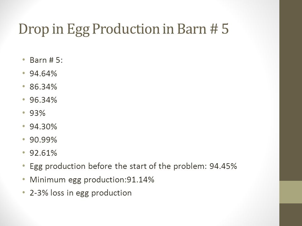 Drop in Egg Production in Barn # 5 Barn # 5: 94.64% 86.34% 96.34% 93% 94.30% 90.99% 92.61% Egg production before the start of the problem: 94.45% Minimum egg production:91.14% 2-3% loss in egg production