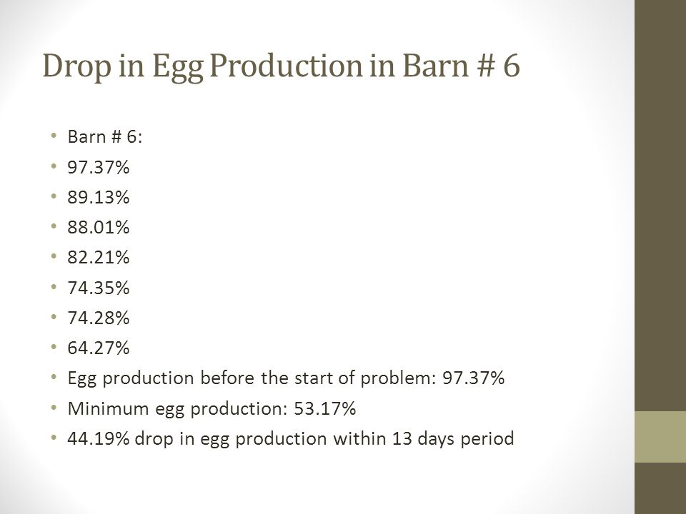 Drop in Egg Production in Barn # 6 Barn # 6: 97.37% 89.13% 88.01% 82.21% 74.35% 74.28% 64.27% Egg production before the start of problem: 97.37% Minimum egg production: 53.17% 44.19% drop in egg production within 13 days period