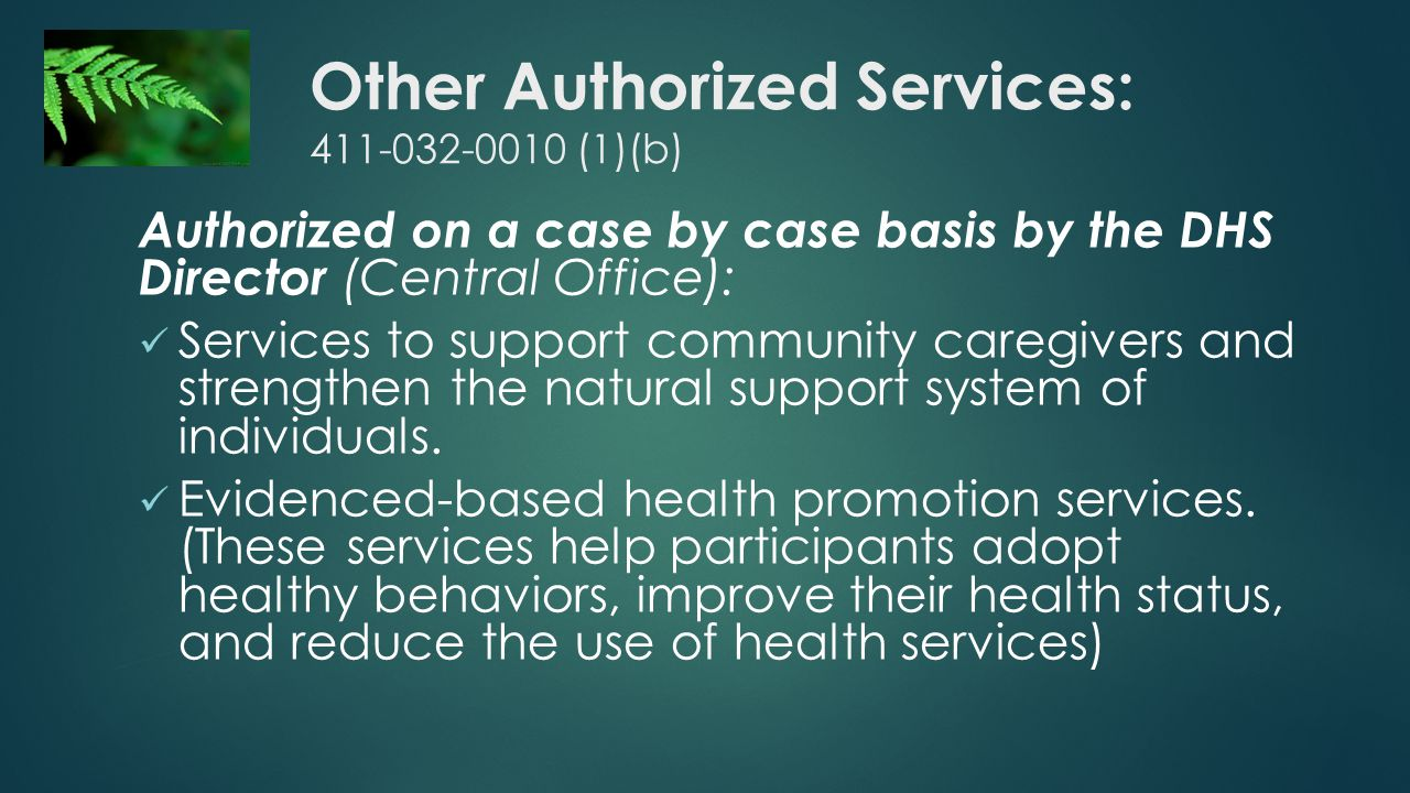 Other Authorized Services: 411-032-0010 (1)(b) Authorized on a case by case basis by the DHS Director (Central Office): Services to support community caregivers and strengthen the natural support system of individuals.