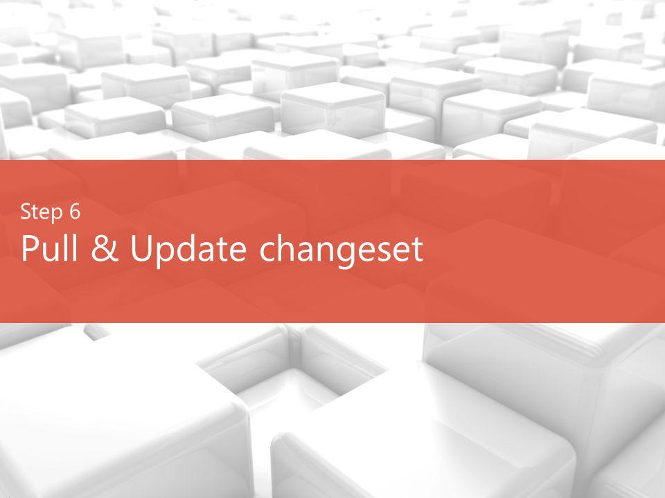 Step 6 Pull & Update changeset
