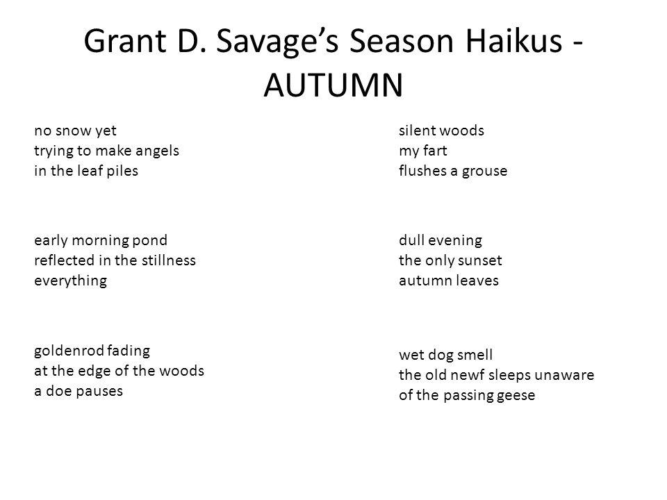 Grant D. Savage's Season Haikus - AUTUMN no snow yet trying to make angels in the leaf piles early morning pond reflected in the stillness everything