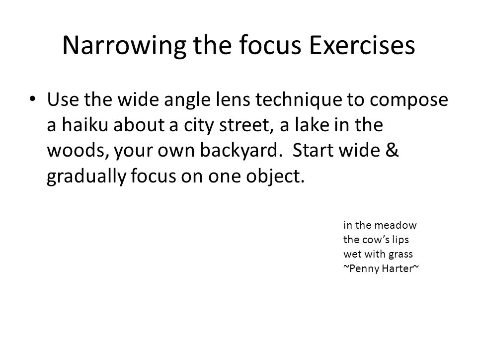 Narrowing the focus Exercises Use the wide angle lens technique to compose a haiku about a city street, a lake in the woods, your own backyard.