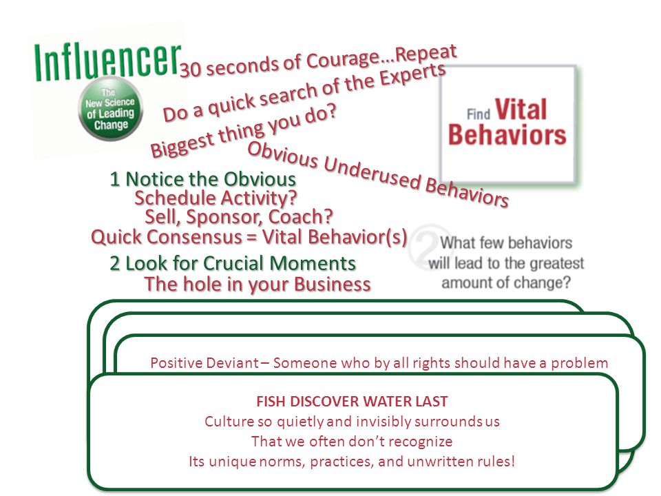 1 Notice the Obvious 2 Look for Crucial Moments 3 Learn from Positive Deviants 4 Spot Culture Busters Schedule Activity.