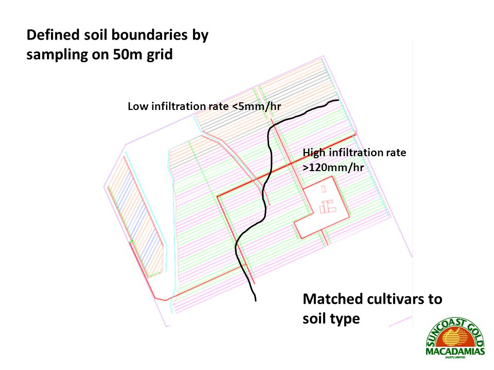 Low infiltration rate <5mm/hr High infiltration rate >120mm/hr Defined soil boundaries by sampling on 50m grid Matched cultivars to soil type