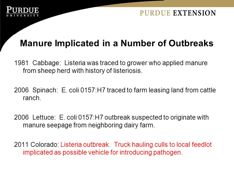 Manure Implicated in a Number of Outbreaks 1981 Cabbage: Listeria was traced to grower who applied manure from sheep herd with history of listeriosis.