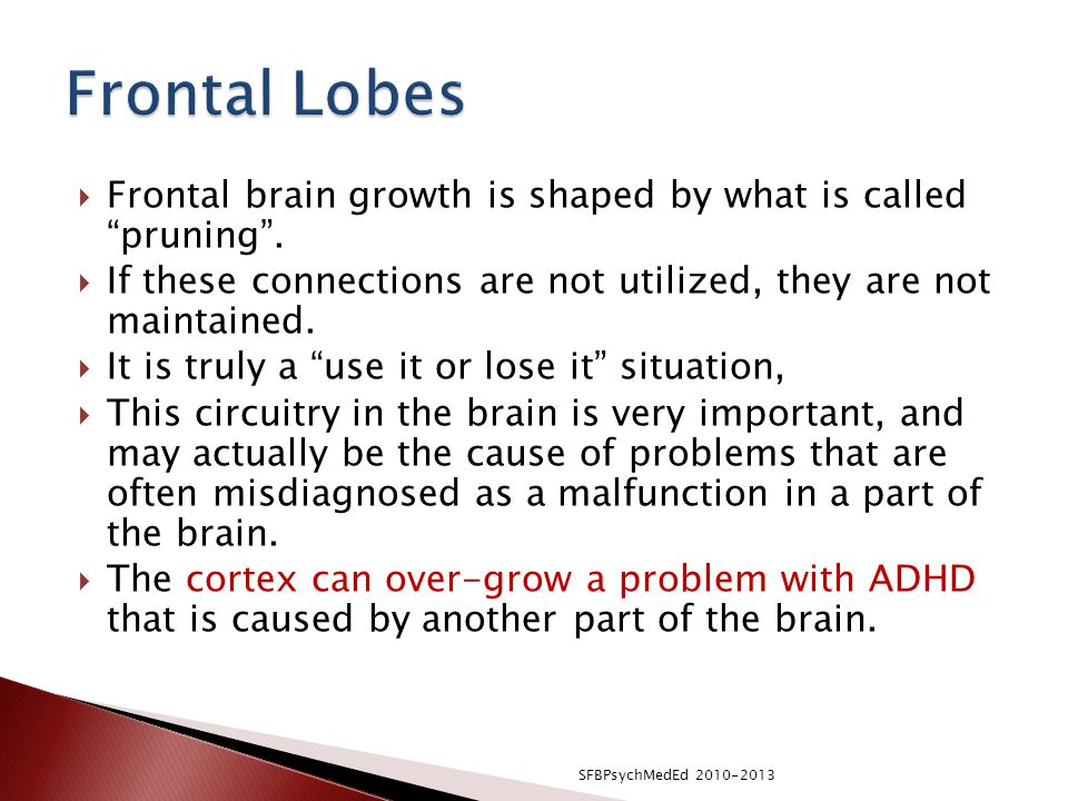  Frontal brain growth is shaped by what is called pruning .