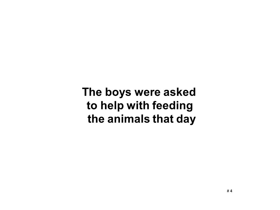 The boys were asked to help with feeding the animals that day # 4