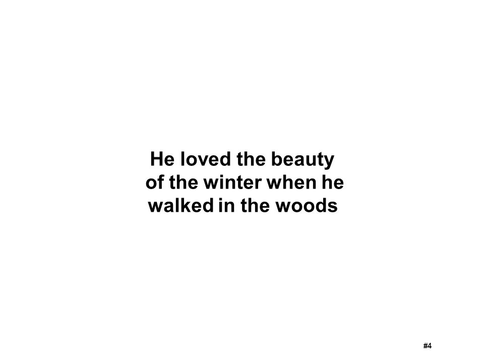 He loved the beauty of the winter when he walked in the woods #4
