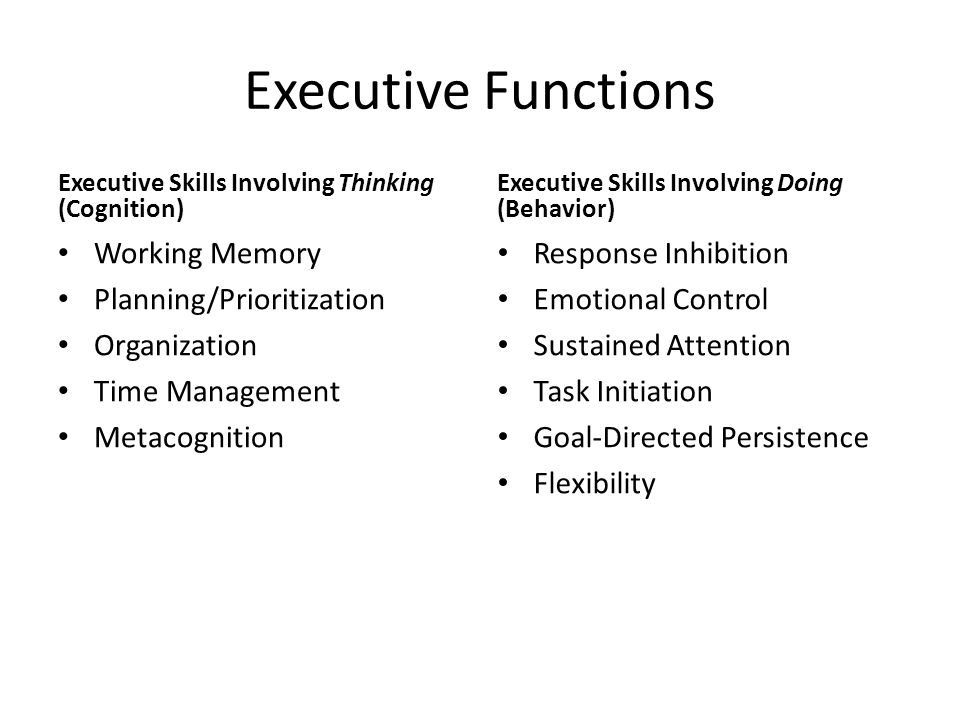 Executive Functions Executive Skills Involving Thinking (Cognition) Working Memory Planning/Prioritization Organization Time Management Metacognition Executive Skills Involving Doing (Behavior) Response Inhibition Emotional Control Sustained Attention Task Initiation Goal-Directed Persistence Flexibility