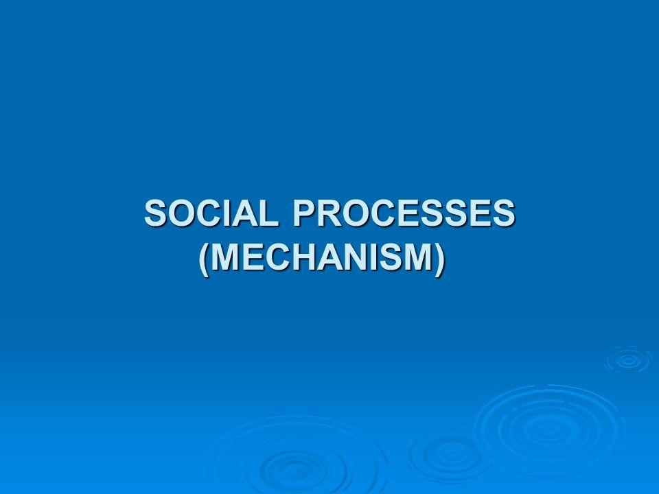 SOCIAL PROCESSES (MECHANISM)