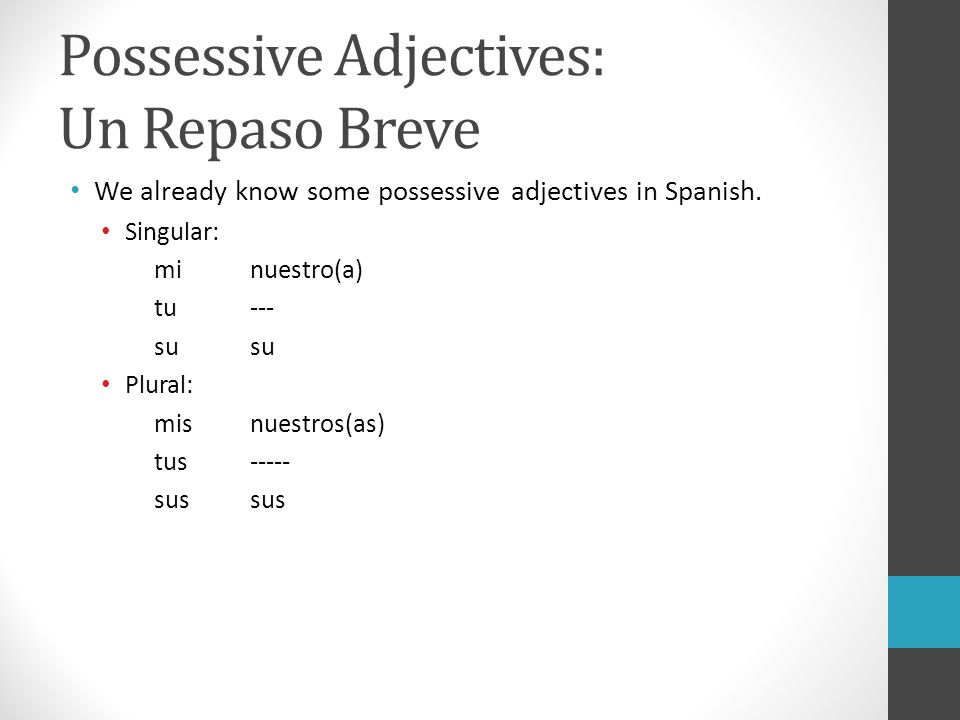 Possessive Adjectives: Un Repaso Breve We already know some possessive adjectives in Spanish. Singular: minuestro(a) tu---su Plural: misnuestros(as) t