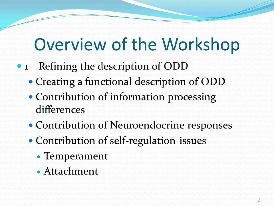 Overview of the Workshop 1 – Refining the description of ODD Creating a functional description of ODD Contribution of information processing differences Contribution of Neuroendocrine responses Contribution of self-regulation issues Temperament Attachment 3