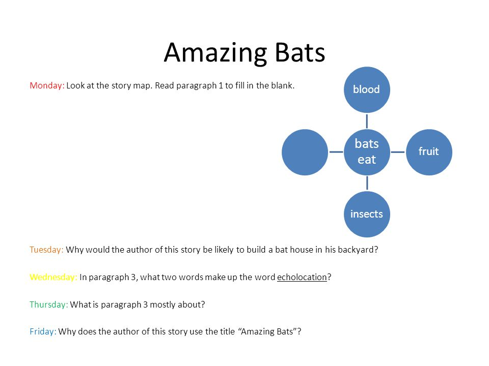 Amazing Bats Monday: Look at the story map. Read paragraph 1 to fill in the blank. Tuesday: Why would the author of this story be likely to build a ba