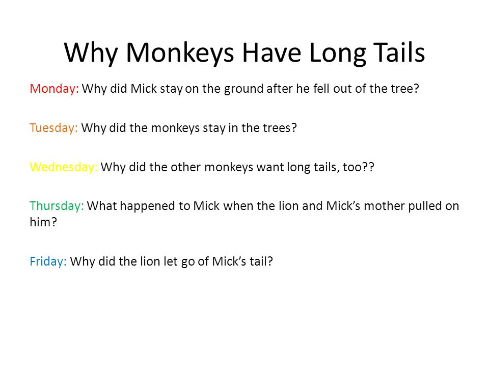 Why Monkeys Have Long Tails Monday: Why did Mick stay on the ground after he fell out of the tree? Tuesday: Why did the monkeys stay in the trees? Wed