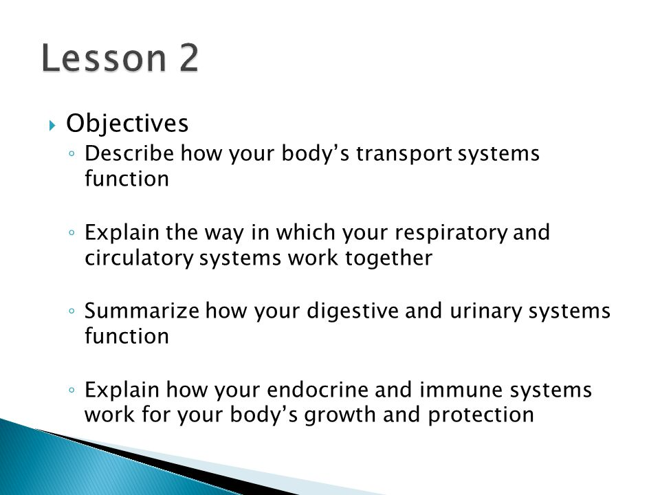  Objectives ◦ Describe how your body's transport systems function ◦ Explain the way in which your respiratory and circulatory systems work together ◦ Summarize how your digestive and urinary systems function ◦ Explain how your endocrine and immune systems work for your body's growth and protection