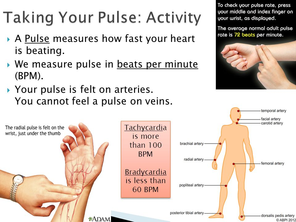  A Pulse measures how fast your heart is beating.