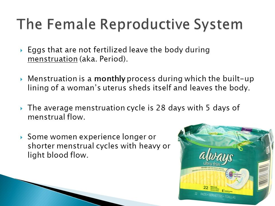  Eggs that are not fertilized leave the body during menstruation (aka.
