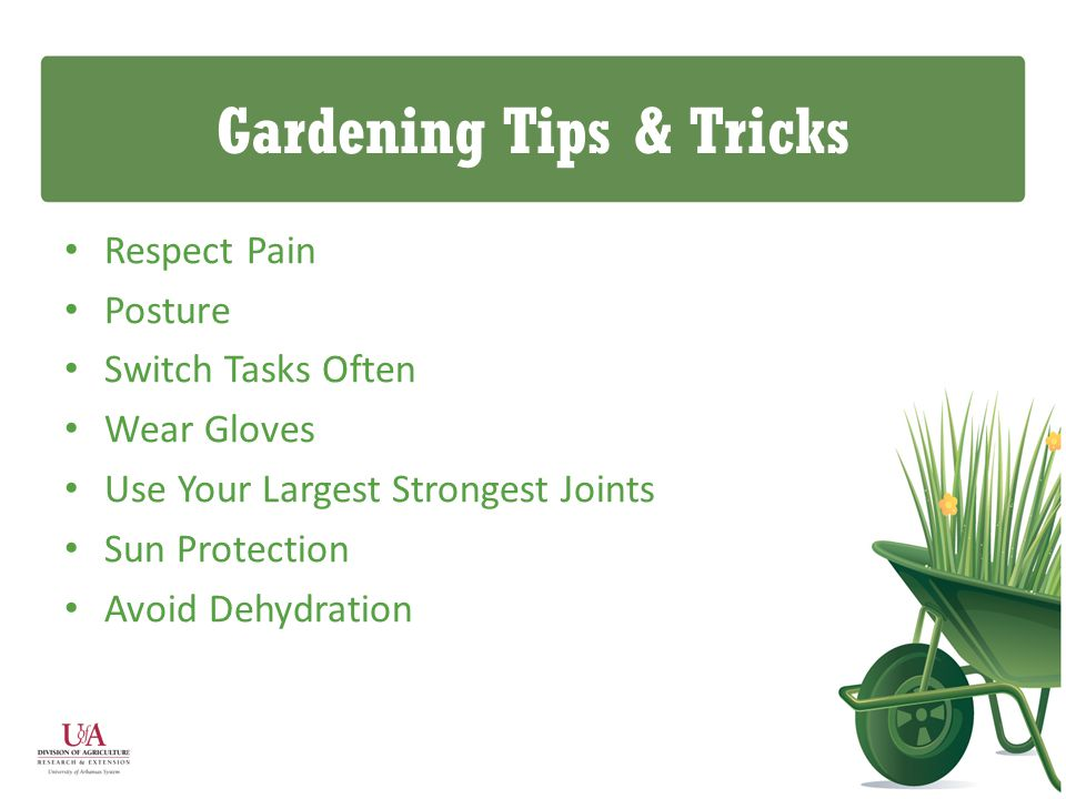 Gardening Tips & Tricks Respect Pain Posture Switch Tasks Often Wear Gloves Use Your Largest Strongest Joints Sun Protection Avoid Dehydration