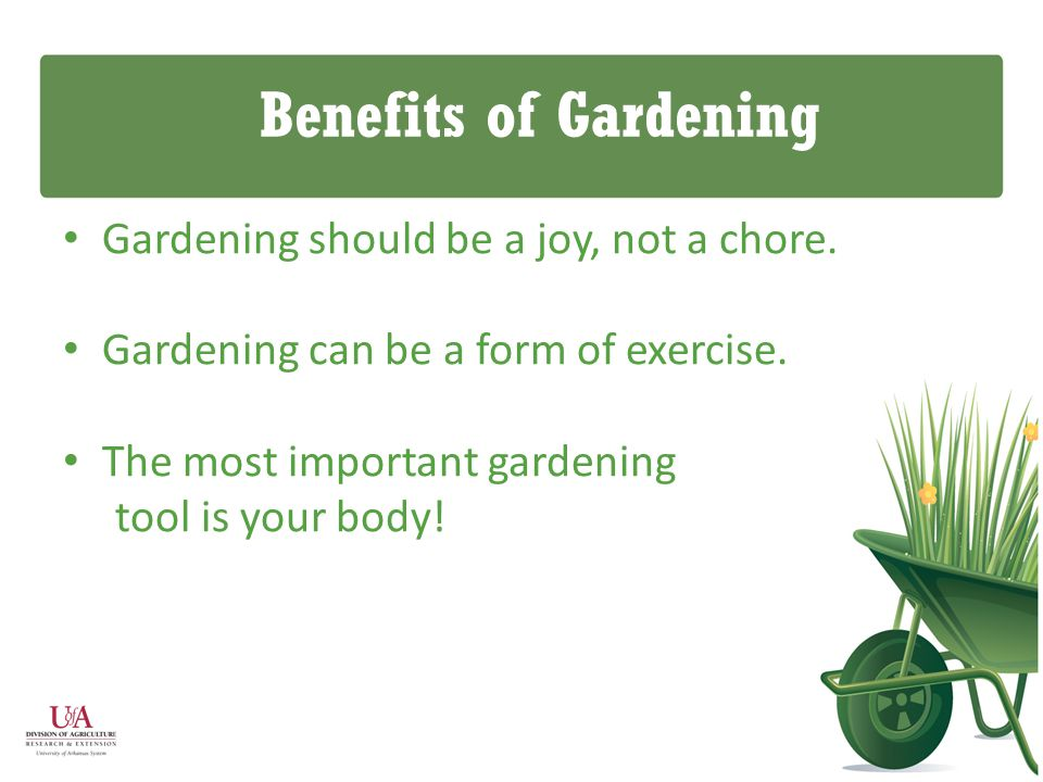 Benefits of Gardening Gardening should be a joy, not a chore.