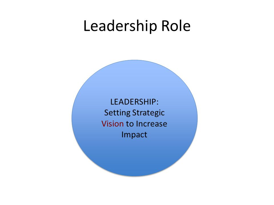 Leadership Role LEADERSHIP: Setting Strategic Vision to Increase Impact LEADERSHIP: Setting Strategic Vision to Increase Impact