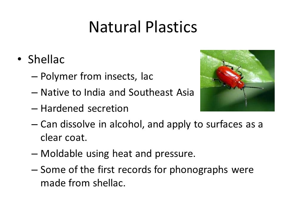 Natural Plastics Shellac – Polymer from insects, lac – Native to India and Southeast Asia – Hardened secretion – Can dissolve in alcohol, and apply to surfaces as a clear coat.