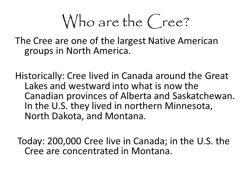 Who are the Cree. The Cree are one of the largest Native American groups in North America.