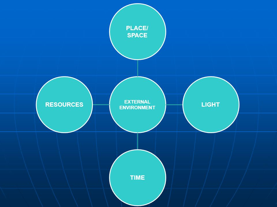 EXTERNAL ENVIRONMENT PLACE/ SPACE LIGHTTIMERESOURCES