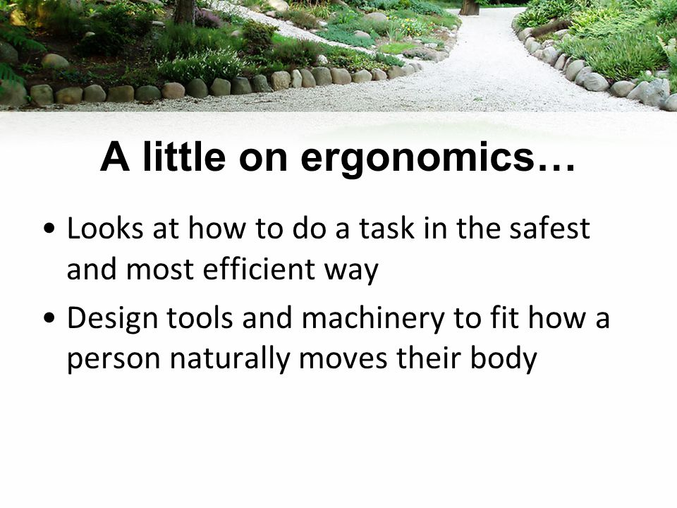A little on ergonomics… Looks at how to do a task in the safest and most efficient way Design tools and machinery to fit how a person naturally moves their body