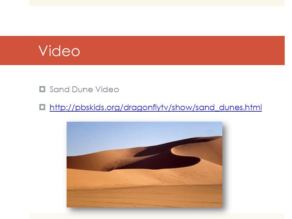 Video  Sand Dune Video  http://pbskids.org/dragonflytv/show/sand_dunes.html http://pbskids.org/dragonflytv/show/sand_dunes.html