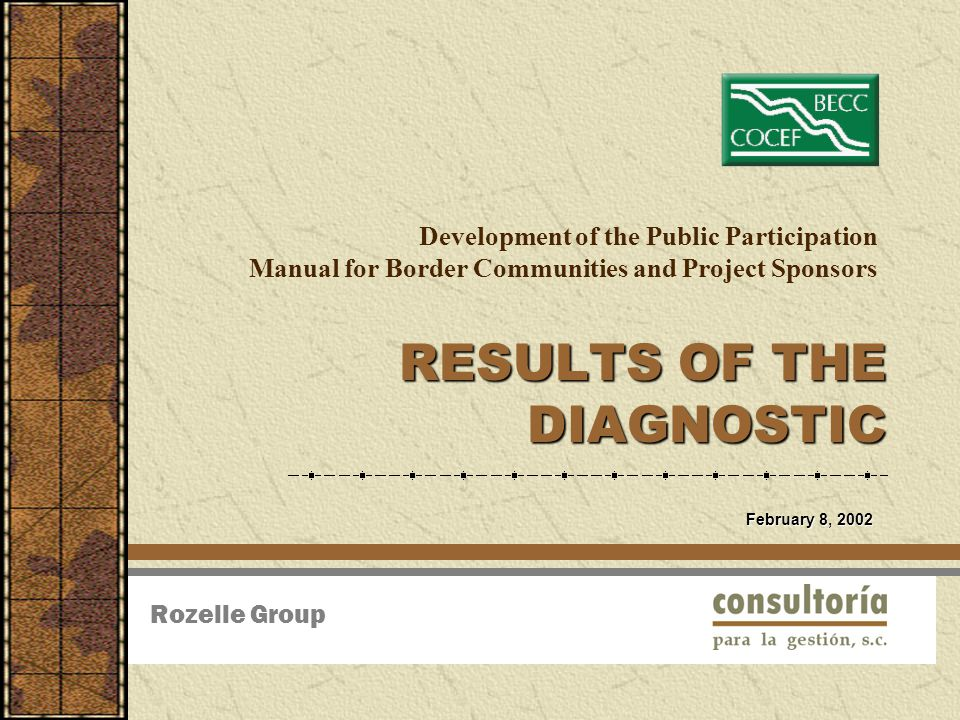 Development of the Public Participation Manual for Border Communities and Project Sponsors RESULTS OF THE DIAGNOSTIC Rozelle Group February 8, 2002