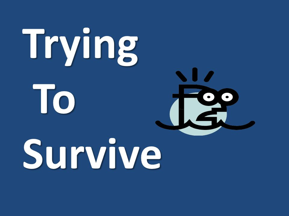 Trying To Survive