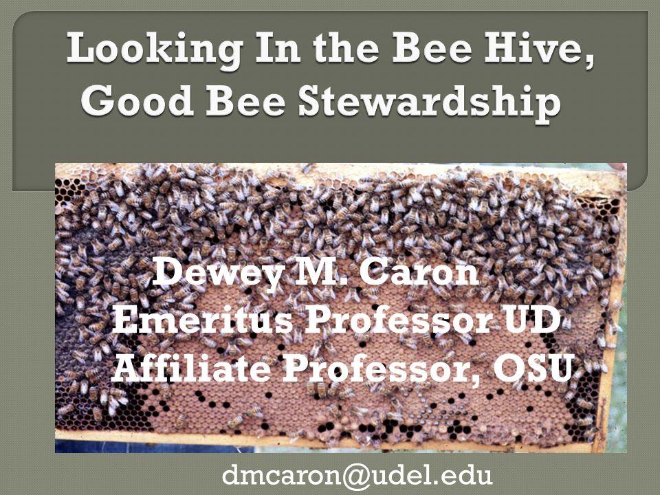 Dewey M. Caron Emeritus Professor UD Affiliate Professor, OSU dmcaron@udel.edu