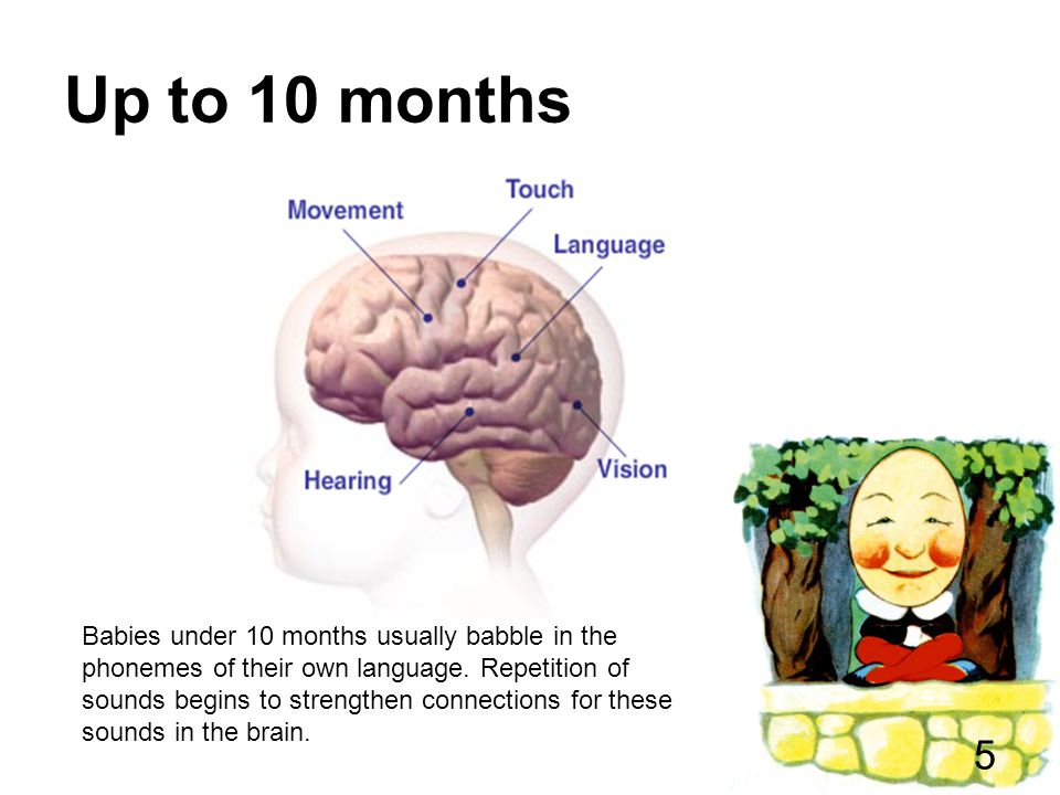 Language Development Your child's ability to communicate and express and understand feelings.