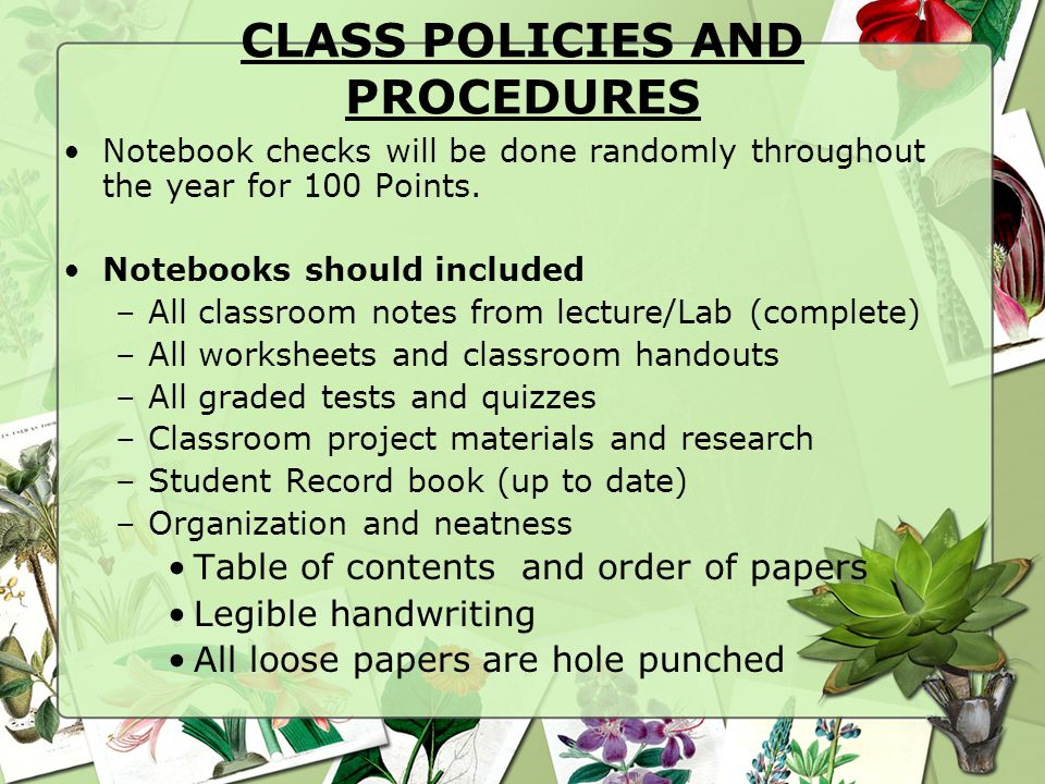 CLASS POLICIES AND PROCEDURES Notebook checks will be done randomly throughout the year for 100 Points. Notebooks should included –All classroom notes