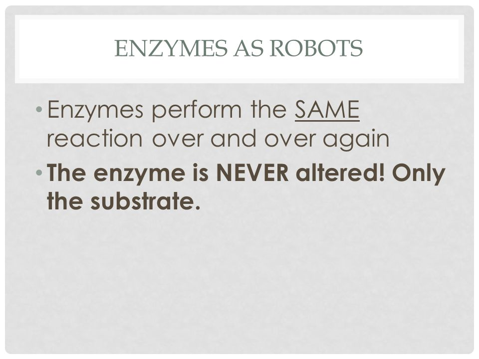 ENZYMES AS ROBOTS Enzymes perform the SAME reaction over and over again The enzyme is NEVER altered.
