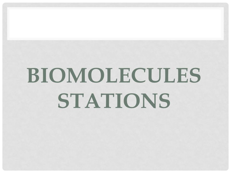 BIOMOLECULES STATIONS