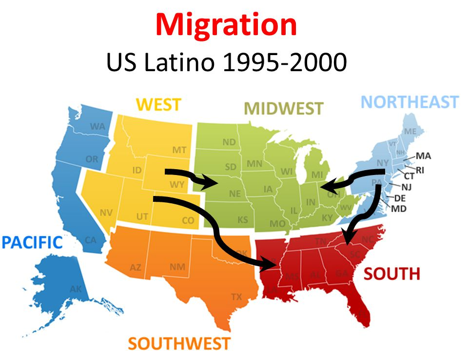 Migration US Black 1995-2000