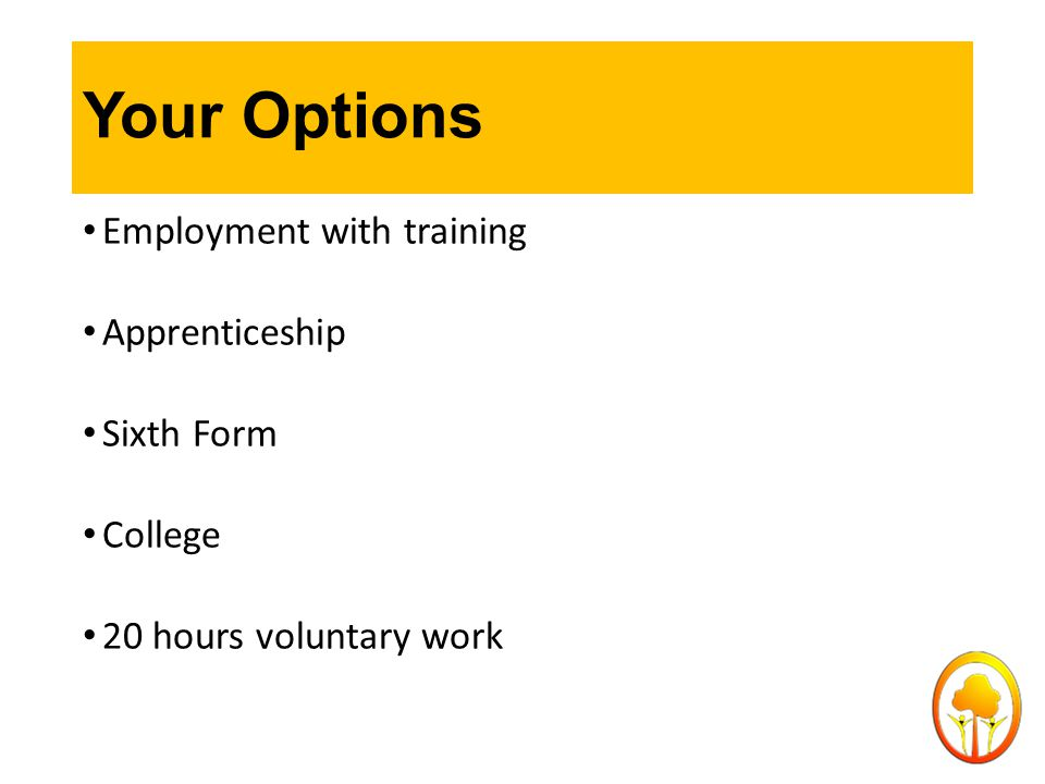 Your Options Employment with training Apprenticeship Sixth Form College 20 hours voluntary work