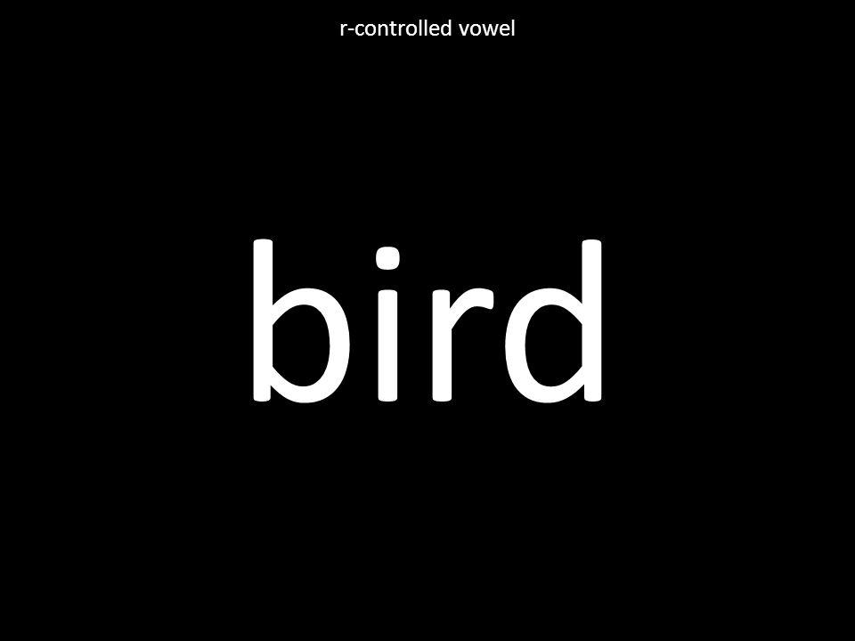 bird r-controlled vowel