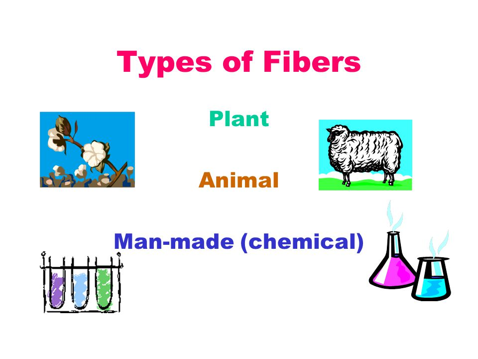 Types of Fibers Plant Animal Man-made (chemical)